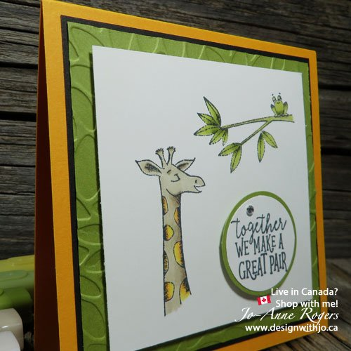 8 super tips for detailed colouring with Stampin Up alcohol markers