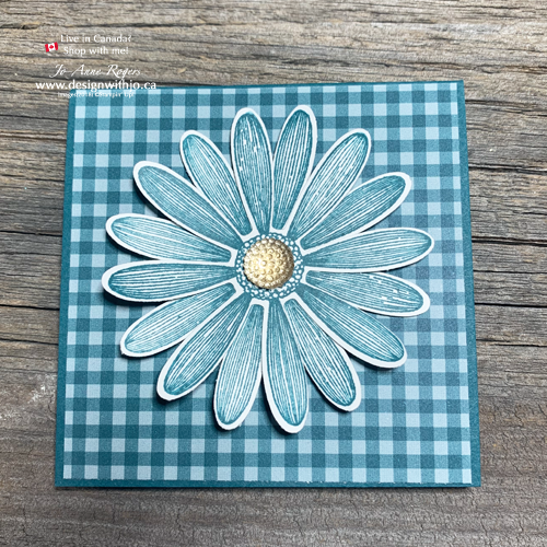 New 2019-21 In Color Daisy Lane Notecards Pretty Peacock