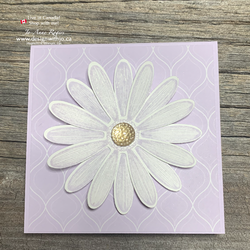 You Can't Go Wrong With the New 2019-21 In Color Daisy Lane Notecards