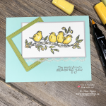 YES YOU CAN! Beginner Colouring with Stampin Blends