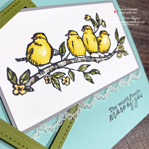 I LOVE How Easy Beginner Colouring with Stampin Blends and the Free as a Bird Stamps from Stampin Up IS!