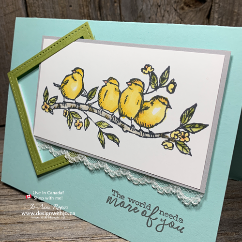 Beginner Colouring with Stampin Blends and Free as a Bird Stamps are Beautiful