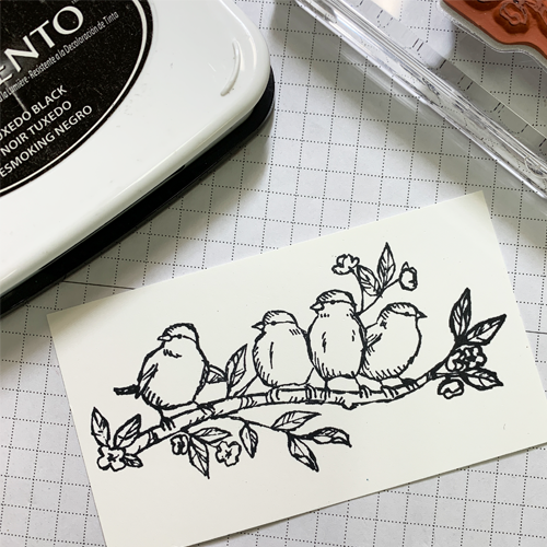 Beginner Colouring with Stampin Blends