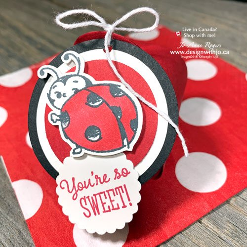 Oh So Adorable DIY Projects with Ladybug Stamps