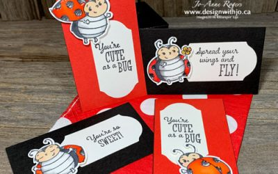 Adorable DIY Projects with Ladybug Stamps 🥰