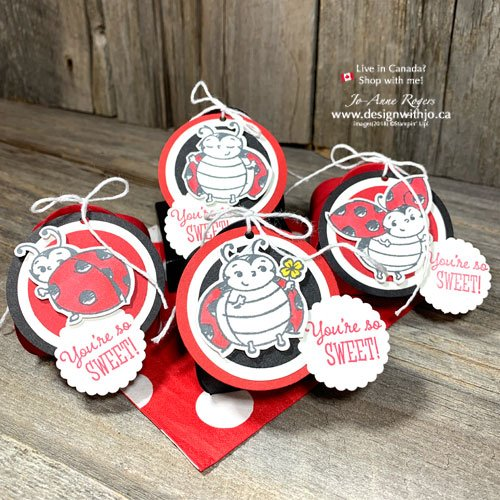 Adorable DIY Projects with Ladybug Stamps and the Mini Curvy Keepsake Box from Stampin' Up!