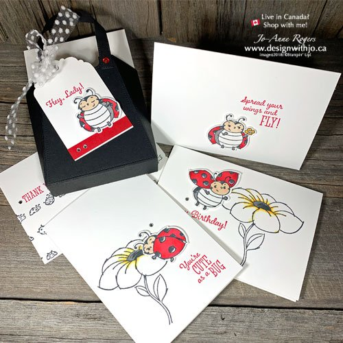 FREE Class to Make Adorable DIY Projects with Ladybug Stamps