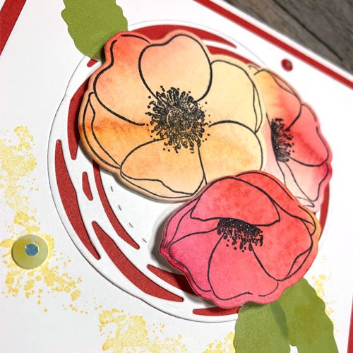 So Gorgeous Watercolour Rubber Stamped Poppies with Painted Poppies stamps and Painted Labels Dies from Stampin Up
