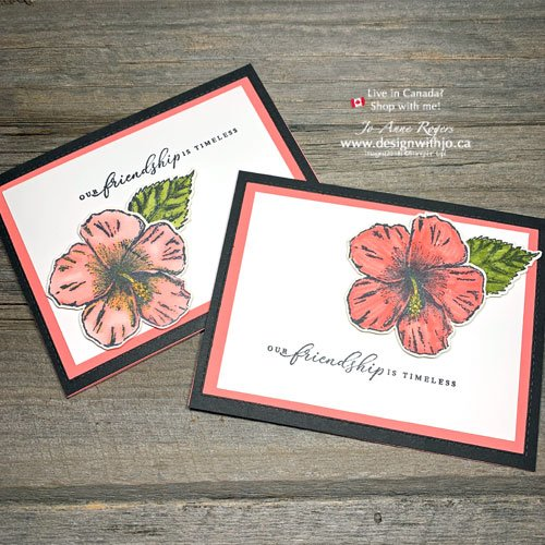 Let Me Show You What's the Difference Between Stampin Write and Stampin Blends Markers?