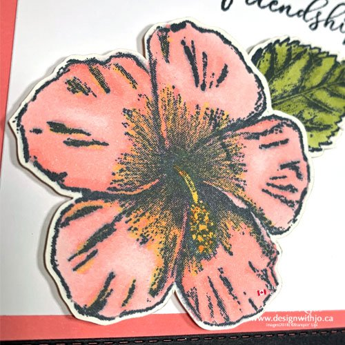 What's the Difference Between Stampin Write and Stampin Blends Markers?