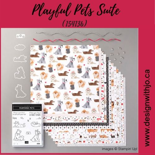 DIY Card for Pet Owners with Pampered Pets Suite from Stampin Up!