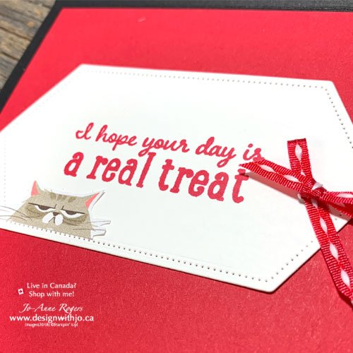 I lOVE This Cute DIY Card for Pet Owners